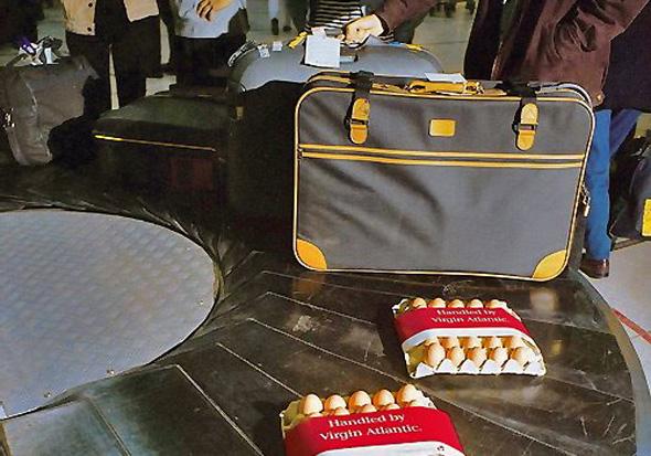 eggs-airport