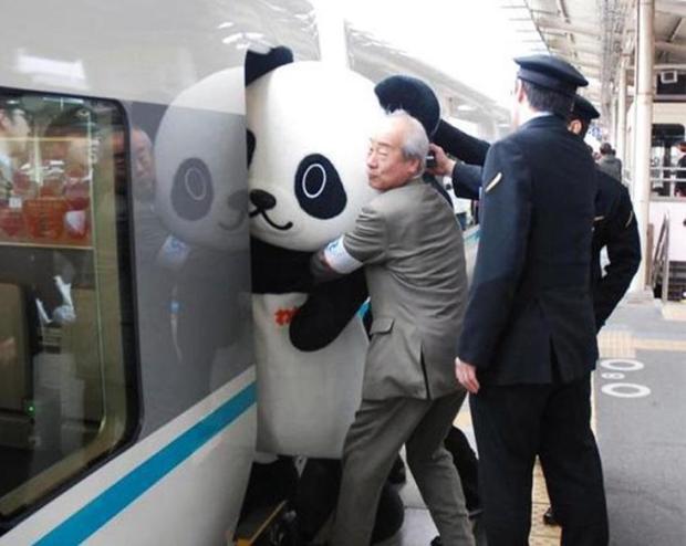 japan-panda-train