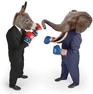 boxing-donkey