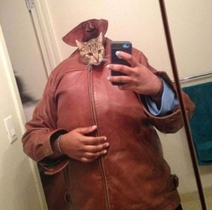 funny-cat-selfie-human-body