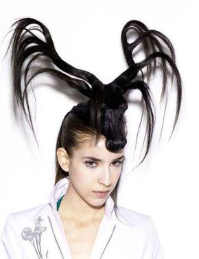 animal-hair